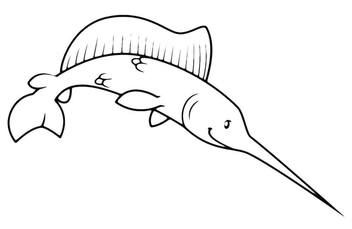 Animals - A big swordfish
