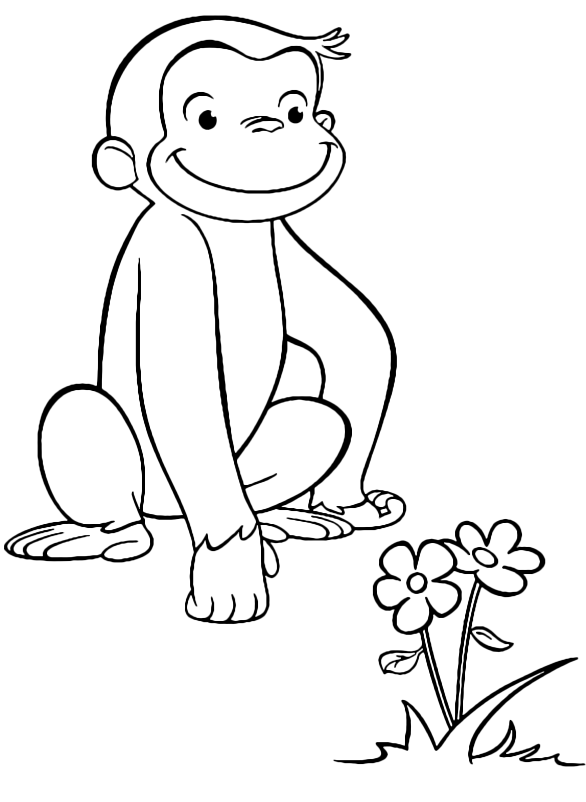 Curious George - George the monkey observes a flower