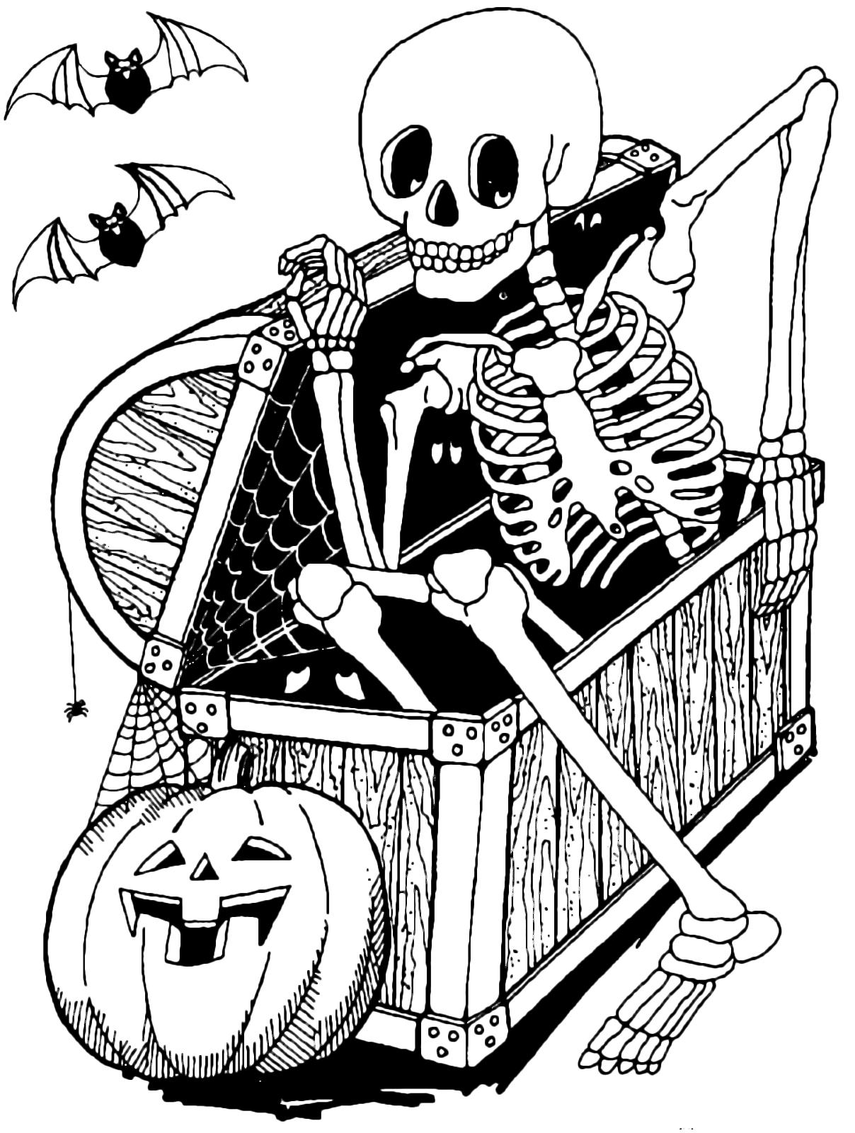 Скелет в картинках для детей, лет милиции открытки