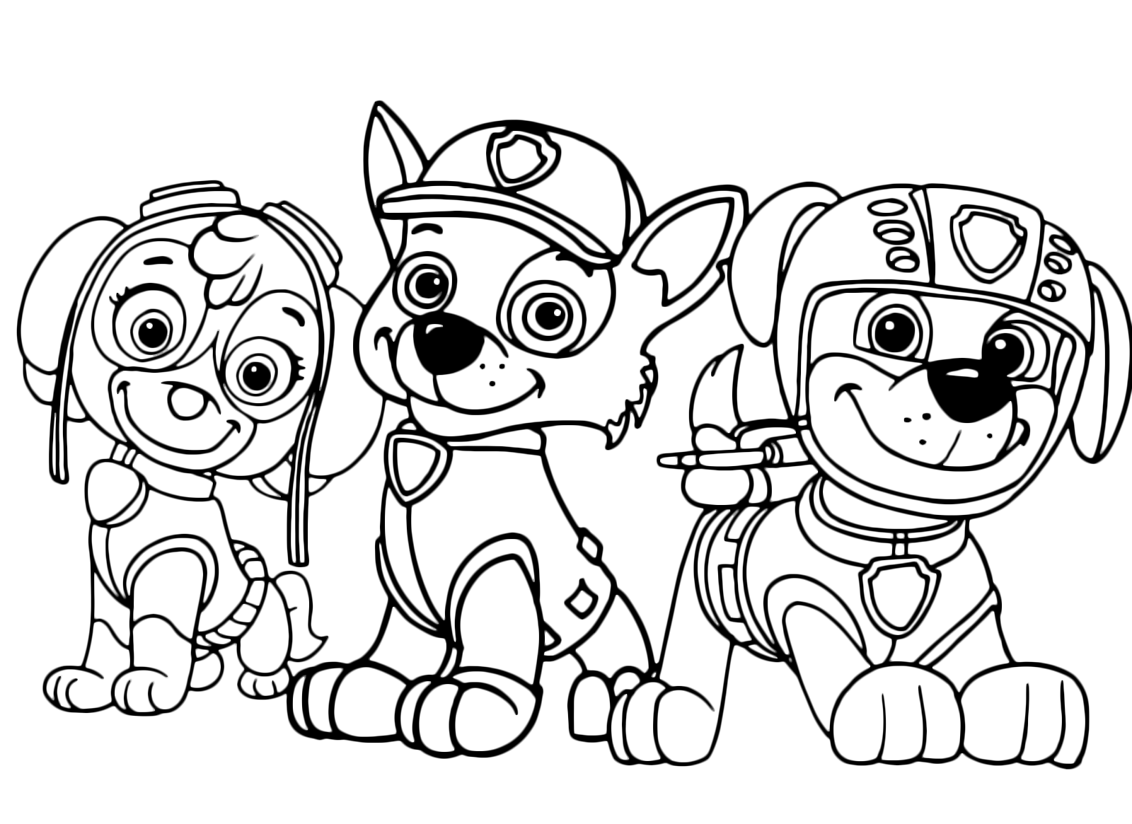 - PAW Patrol - Three Members Of The Paw Patrol Skye Rocky And Zuma