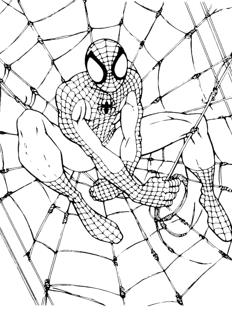 Spiderman coloring pages for Stampe da colorare spiderman