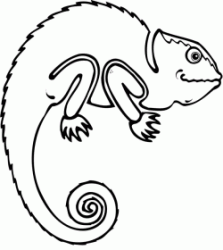 A chameleon with a curly tail