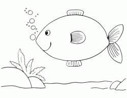 A fish on the seabed