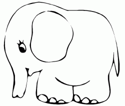 A sweet little elephant