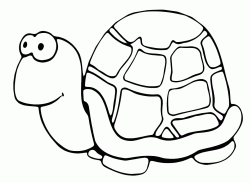 A very slow turtle