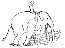 An elephant carries the wooden logs