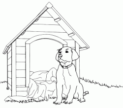 Dog in front of kennel