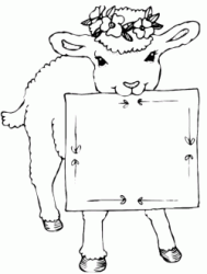 Sheep with sign