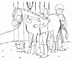 The little girl cleans her horse