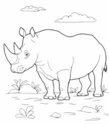 The rhino in hot savanna