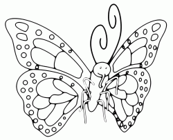 A butterfly with a beautiful wings design