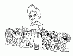 All team members of the Paw Patrol