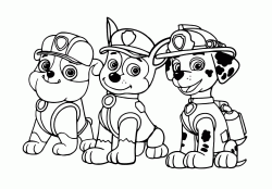 Rubble Chase and Marshall three important members of the Paw Patrol