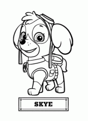 Skye the dog for air rescue