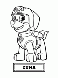 Zuma the dog for the water rescue