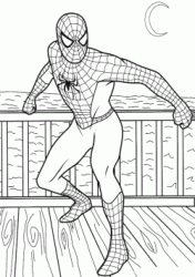 Spiderman on the terrace